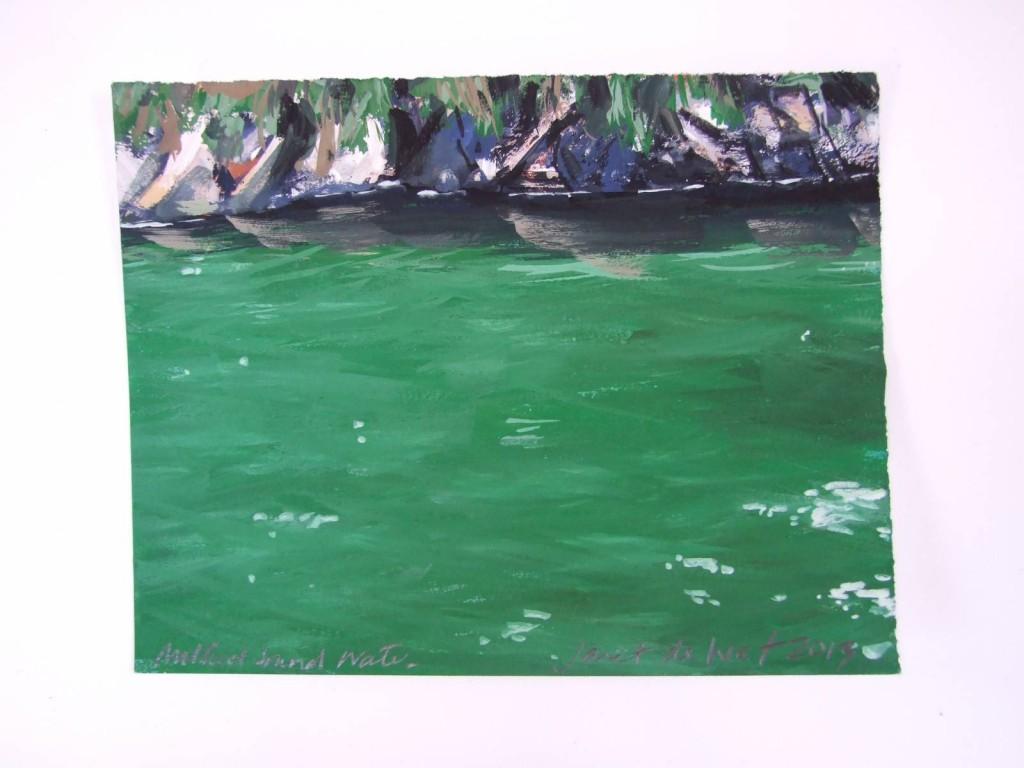 Fiordland small paintings 240